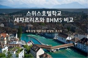 스위스 BHMS와 세자르리츠 호텔학교 편입시 차이점!